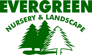 Evergreen Nursery & Landscape
